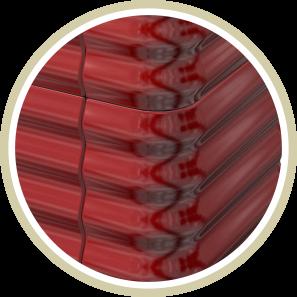 nox red